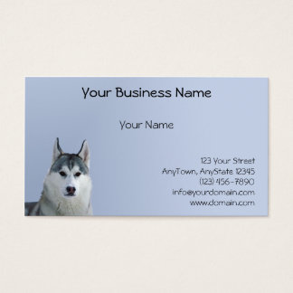 Siberian Husky on Blue Background Business Card
