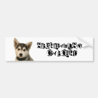 Siberian Husky on Board Bumper Sticker