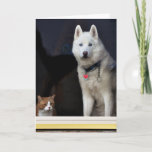 Siberian Husky Photo Card