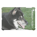 Siberian Husky Photo iPad Mini Cover