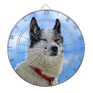 Siberian husky portrait dart board