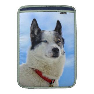 Siberian husky portrait MacBook air sleeve