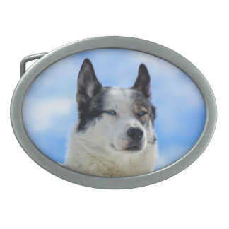 Siberian husky portrait oval belt buckle