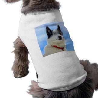 Siberian husky portrait tee