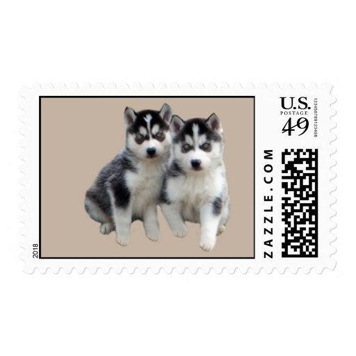 Siberian Husky Postage Stamp