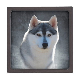 Siberian Husky Premium Trinket Boxes