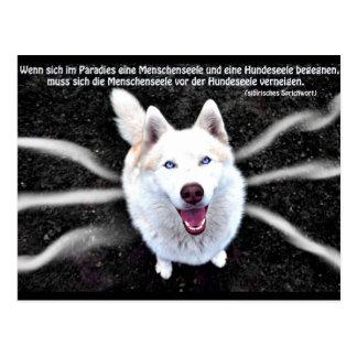 Siberian Husky proverb Postcard
