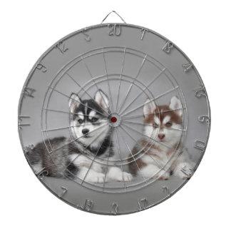 Siberian husky puppies dartboard with darts
