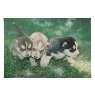Siberian Husky Puppies Dog Placemat