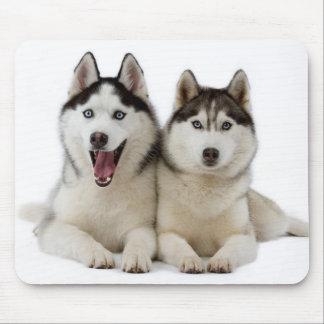 Siberian Husky Puppies Mousepad