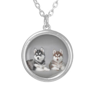 Siberian husky puppies silver plated necklace