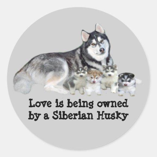 Siberian Husky & Puppies Sticker