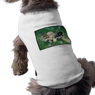 Siberian Husky Puppies Tee