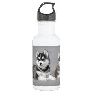 Siberian husky puppies water bottle