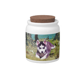 Siberian_Husky_Puppy,_ Candy Dishes