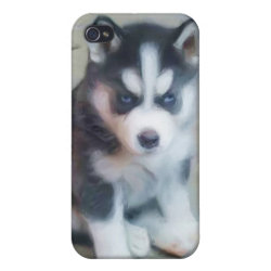 Case Savvy iPhone 4 Matte Finish Case with Siberian Husky Phone Cases design
