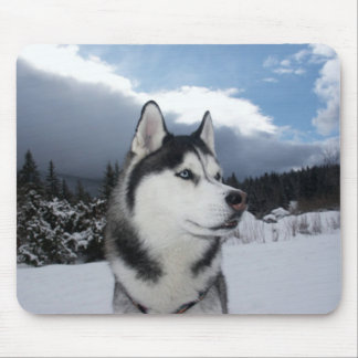 Siberian Husky Puppy Dog Winter  Snow Mouse Pad