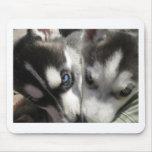Siberian Husky Puppy mug Mousepads