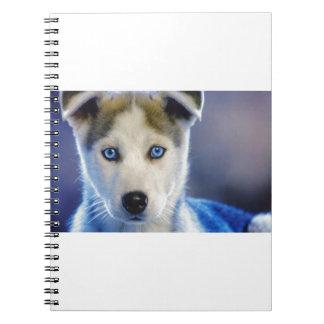 Siberian Husky Puppy Notebooks