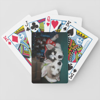 Siberian Husky Puppy Playing Cards