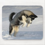 Siberian Husky puppy playing in the snow. Mouse Pad