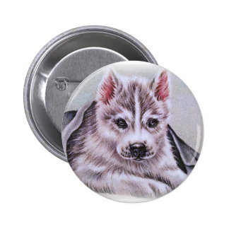 Siberian Husky Puppy with Blanket Drawing 2 Inch Round Button