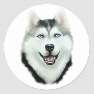 Siberian Husky Round Stickers