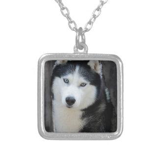 Siberian Husky Silver Plated Necklace