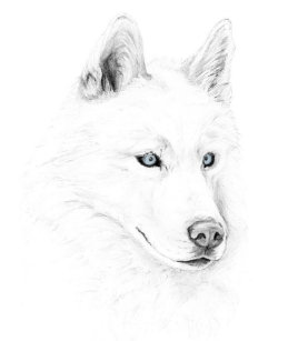 Siberian Husky Bags Zazzle