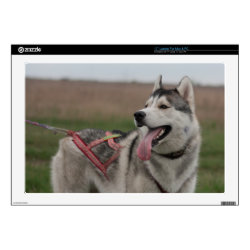 17' Laptop Skin for Mac & PC with Siberian Husky Phone Cases design