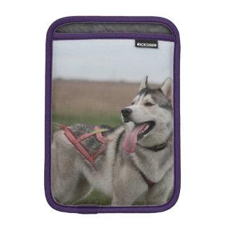 Siberian Husky sled dog iPad Mini Sleeves