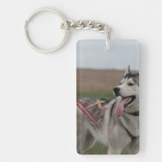 Siberian Husky sled dog Single-Sided Rectangular Acrylic Keychain