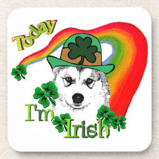 Siberian Husky St Patrick's Beverage Coaster