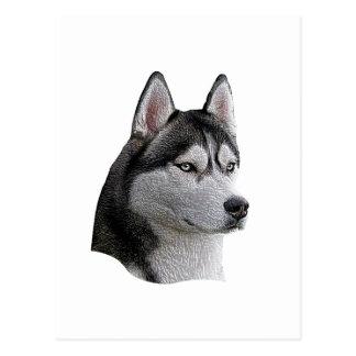 Siberian Husky - Stylized Image - Add Your Text Postcard