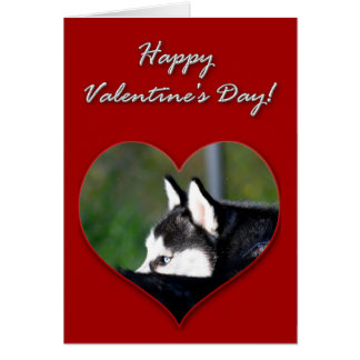 Siberian Husky Valentines Day Card