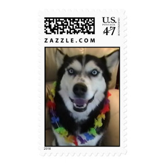 Siberian Husky wearing a lei Postage Stamp