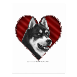 SIberian Husky with Heart Postcard