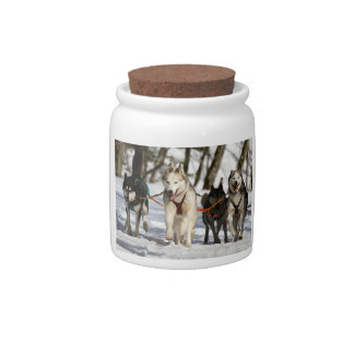 siberian husky working group candy dishes