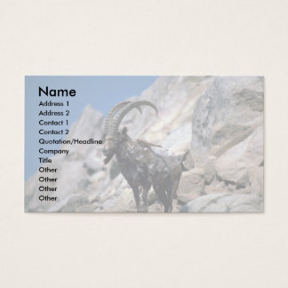 Siberian ibex business card