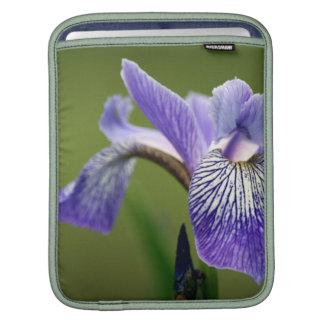 Siberian Iris iPad Sleeve