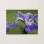 Siberian Iris  Puzzle