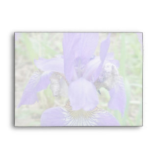 Siberian Iris Wildflower - Iris sibirica Envelope