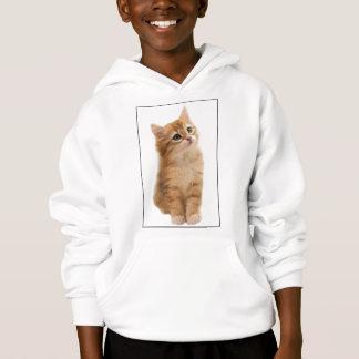Siberian Kitten on Shirt