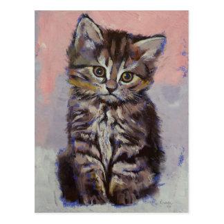 Siberian Kitten Postcard