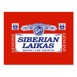 Siberian Laikas Postcard