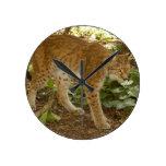 siberian lynx 012 clock