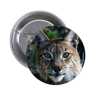 Siberian Lynx Buttons