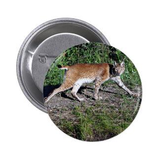 Siberian Lynx Pinback Button