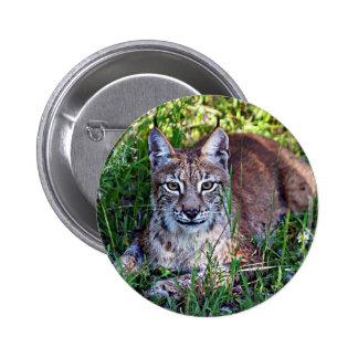 Siberian Lynx Pins