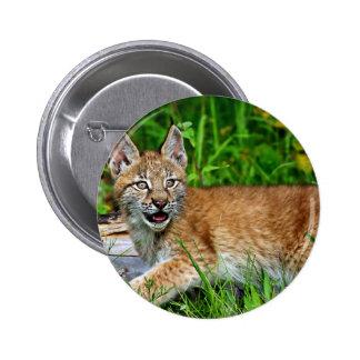 Siberian Lynx Kitten Pins